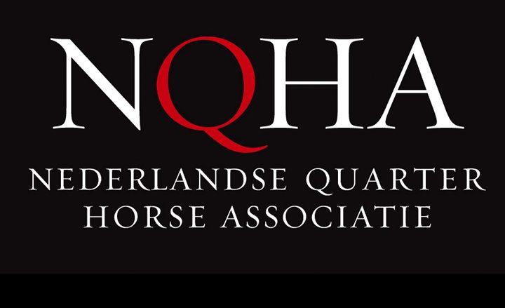 Dutch Championship Quarter Horses