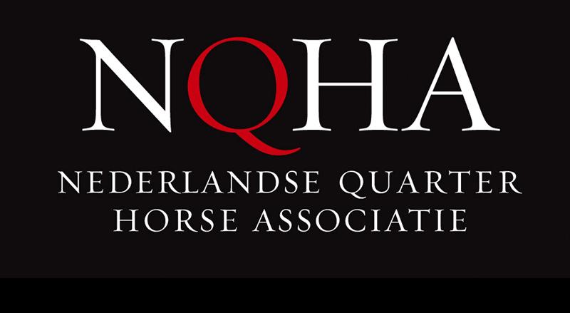NK Quarter Horses