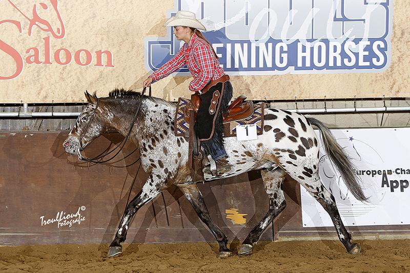 European Championship Appaloosa Horses